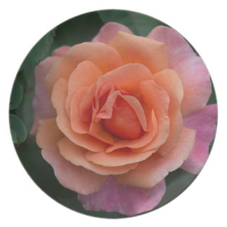 Orange Pinwheel Rose Melamine Plate