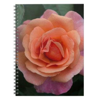 Orange Pinwheel Rose Notebook