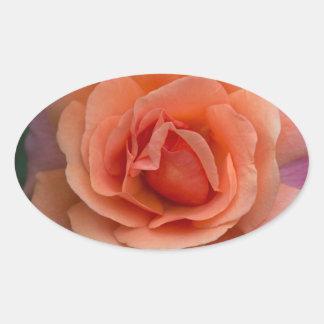 Orange Pinwheel Rose Oval Sticker
