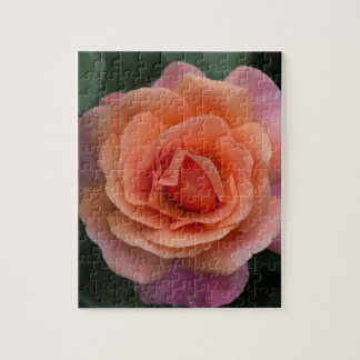 Orange Pinwheel Rose Puzzle