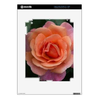 Orange Pinwheel Rose Skin For iPad 2