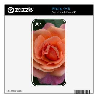 Orange Pinwheel Rose Skin For iPhone 4