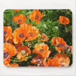 orange poppies mouse pads