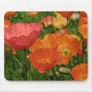 Orange Poppies Mousepad