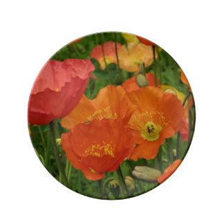 Orange Poppies Plate Porcelain Plates