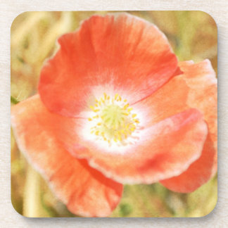 Orange Poppy Coaster Set