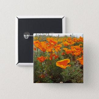 Orange Poppy Field of Flowers Pinback Button