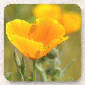 Orange Poppy Floral Drink Coaster
