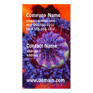 Orange Poppy Up Close Business Cards