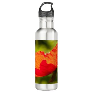 Orange Poppy Water Bottle 24 oz