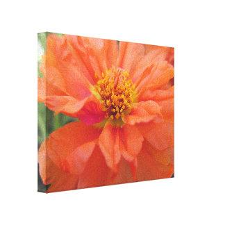 Orange Portulaca Gallery Wrapped Canvas