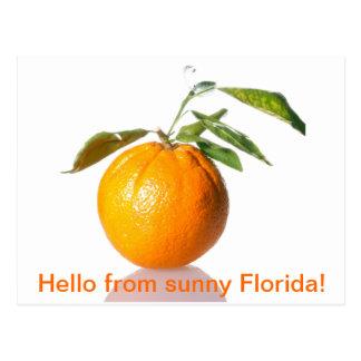 Orange postcard - hello from sunny Florida!