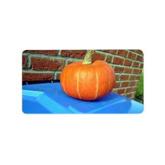 Orange Pumpkin against brick wall Address Label