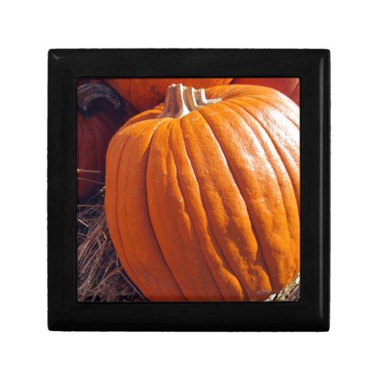 Orange Pumpkin Jewelry Box