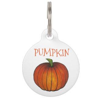 Orange Pumpkin Thanksgiving Halloween Pet Tag