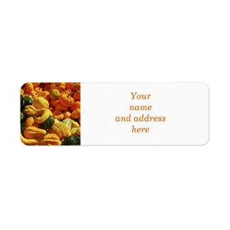 Orange pumpkins and gourds label
