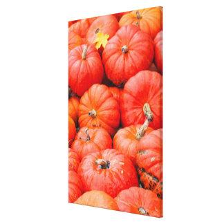 Orange pumpkins at market, Germany Canvas Print