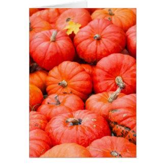 Orange pumpkins at market, Germany Card