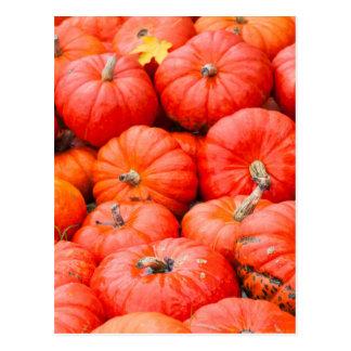Orange pumpkins at market, Germany Postcard