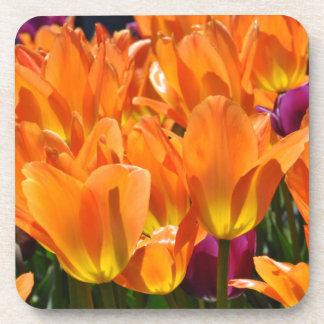 Orange & Purple Tulips Beverage Coaster