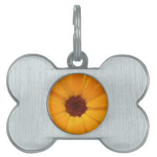 Orange Rain Daisy Pet Tag