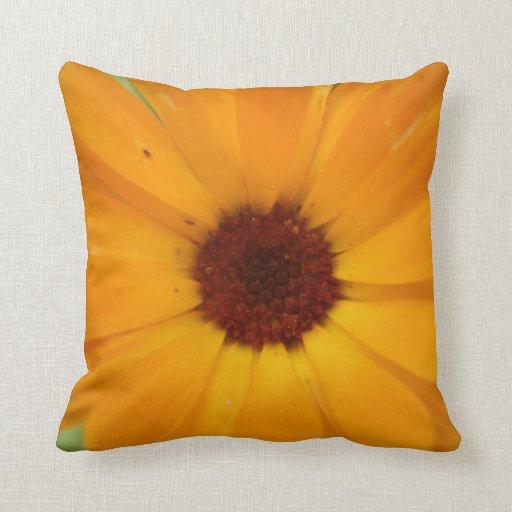 Orange Rain Daisy Pillow