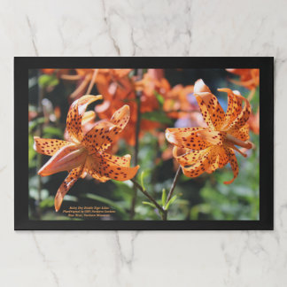 Orange Rainy Day Tiger Lilies Paper Placemat