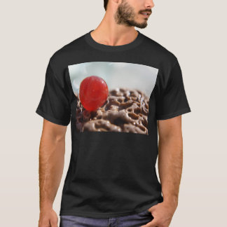 Orange Rare Marble T-Shirt