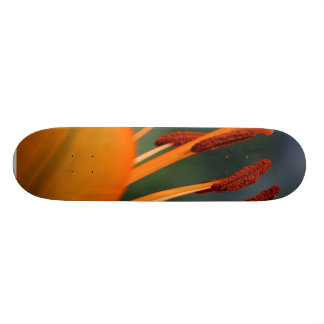 Orange Red Flower Hibiscus Skate Boards