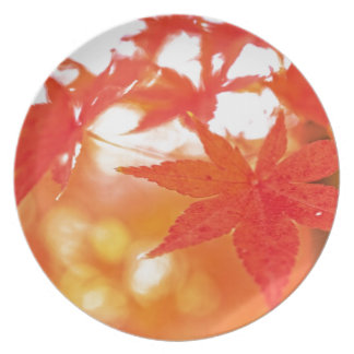Orange Red Maple Leaves Dinner Plate