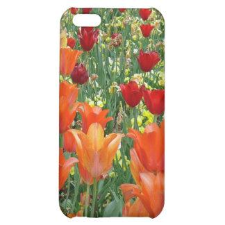 Orange & Red Tulips Case For iPhone 5C