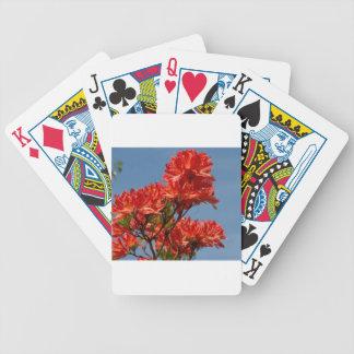 Orange Rhododendron Card Deck