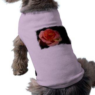 Orange Rose 2 zazzle_petshirt