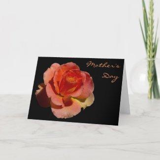 Orange Rose 2 Mother's Day zazzle_card