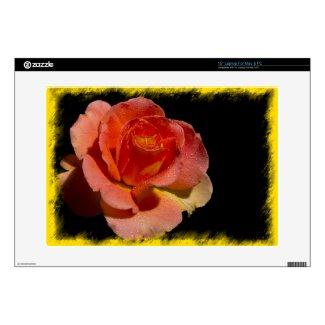 Orange Rose 2 musicskins_skin