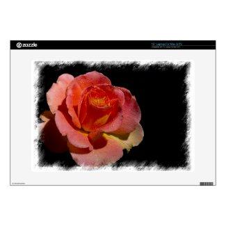 Orange Rose 2 White Border musicskins_skin