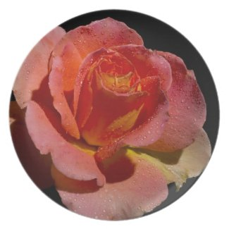 Orange Rose 3 Party Plates