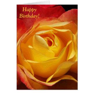 Orange Rose Birthday Card