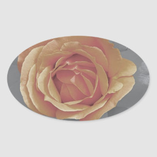 Orange rose blossoms print oval sticker