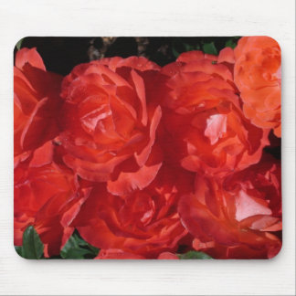 Orange Rose Bunches Mouse Pad