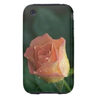 Orange Rose iPhone 3 Tough Covers