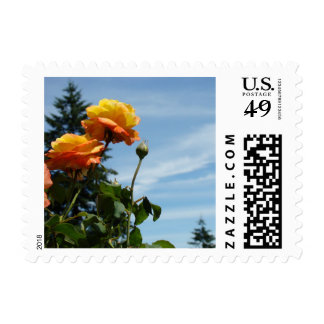 Orange Rose Flowers postage stamps Blue Sky Clouds