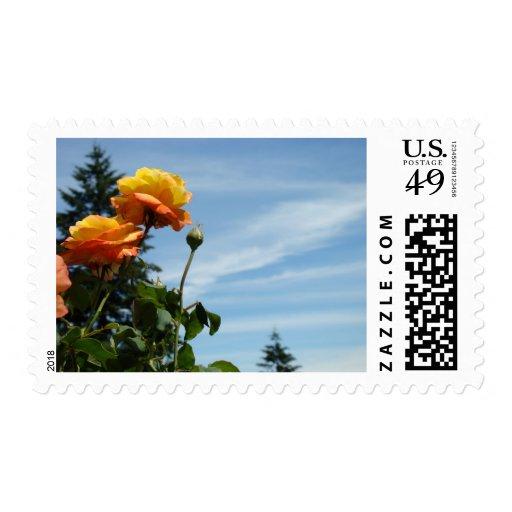 Orange Rose Flowers postage Stamps Invitations