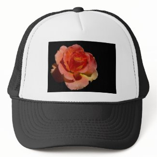 Orange Rose zazzle_hat
