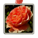 Orange Rose II Pretty Floral Metal Ornament