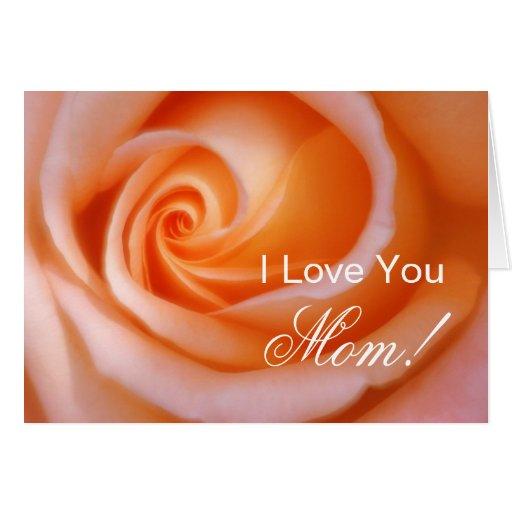 Orange Rose Mother's Day Greeting Card