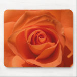Orange Rose Mouse  pad Mouse Pads