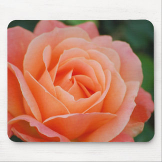 Orange Rose Mousepad