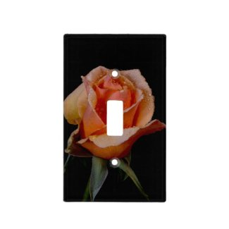 Orange Rose on Black Switch Plate Cover