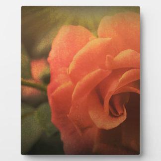 Orange Rose Plaque